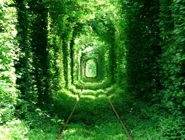Green Mile Tunnel, Photo: Wikimedia